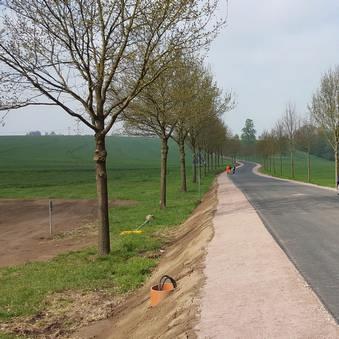 Landschaftspflegerische Begleitpläne für verschiedene Straßenbauvorhaben